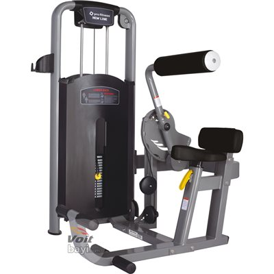 ProFitness Pro 209 Lower Back